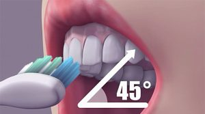 Brushing at a 45-degree angle